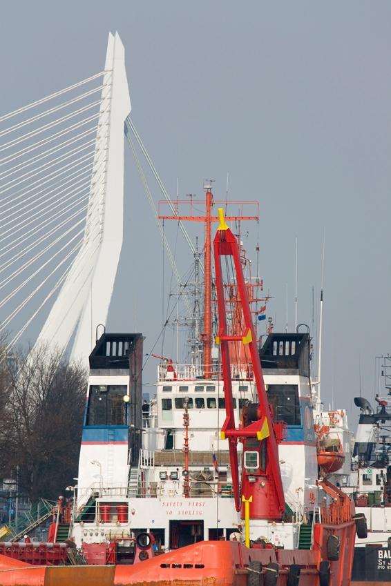 The Erasmus Bridgein the brackground, 2008