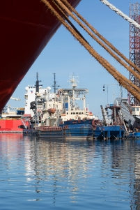 Vessels from the huge Danish shipping company RN Group, which among other things is specialised in harbour construction